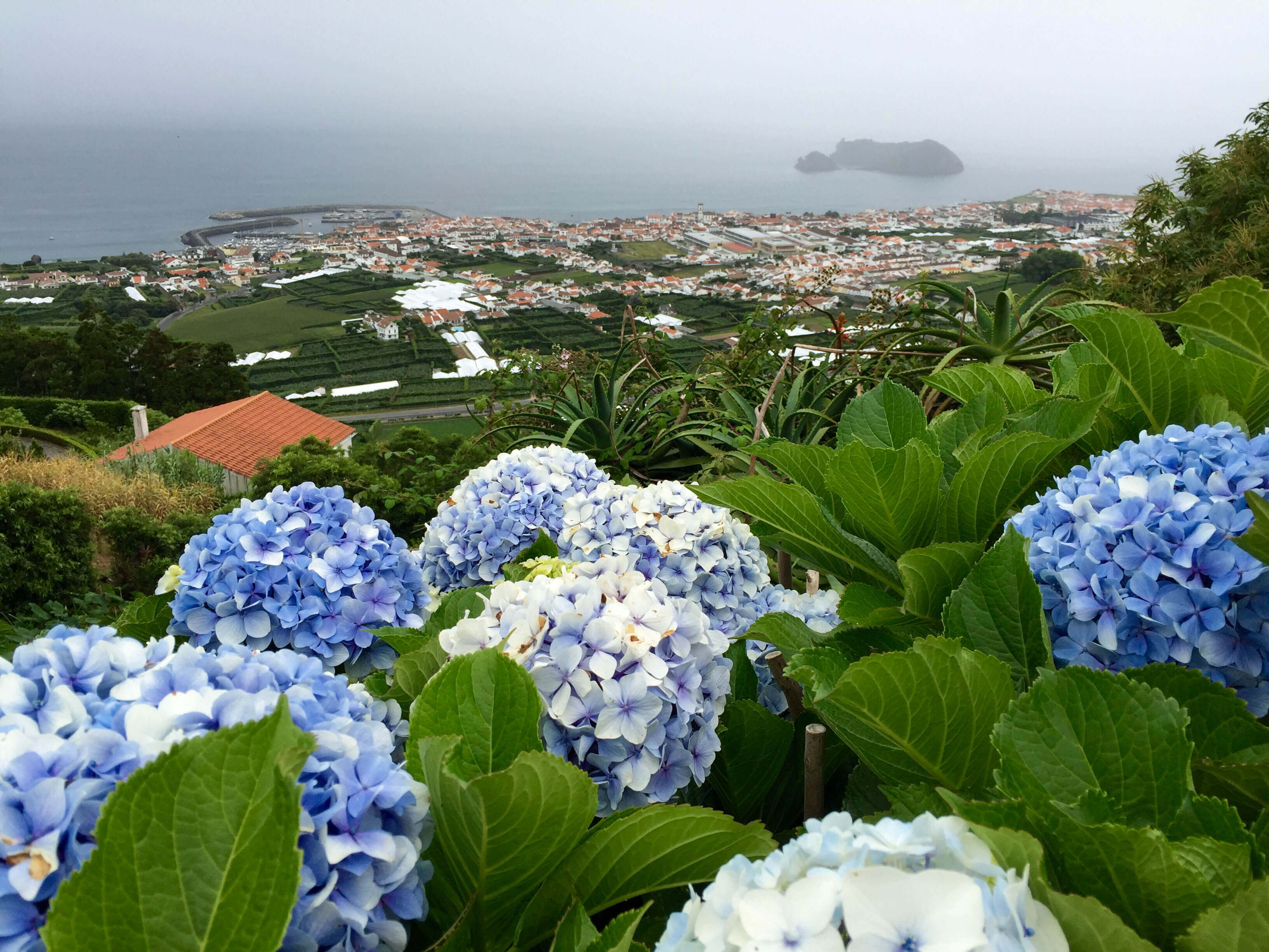 São Miguel Island, miradouro Campo Franco