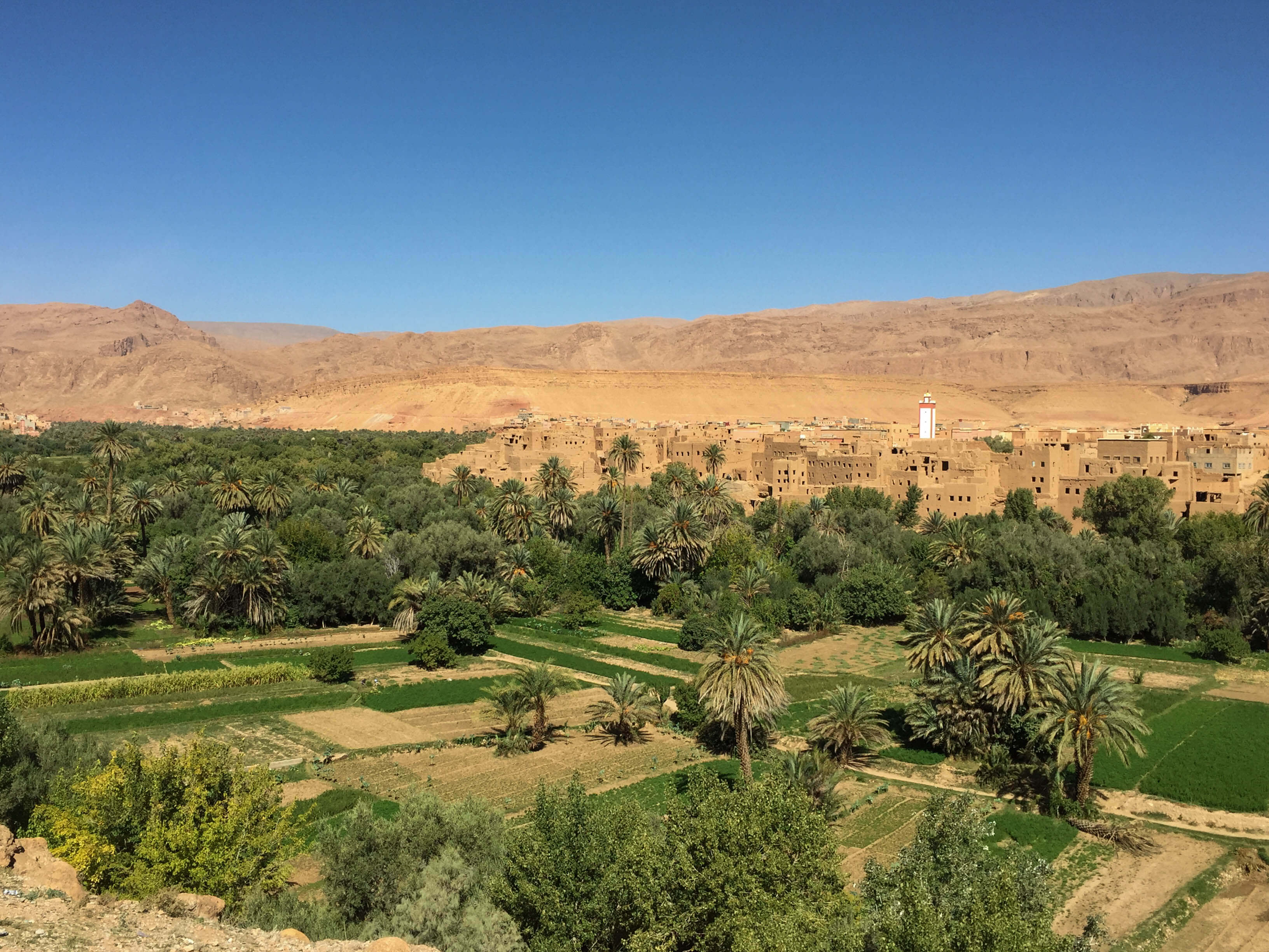 driving through Tinghir on our Morrocan road trip